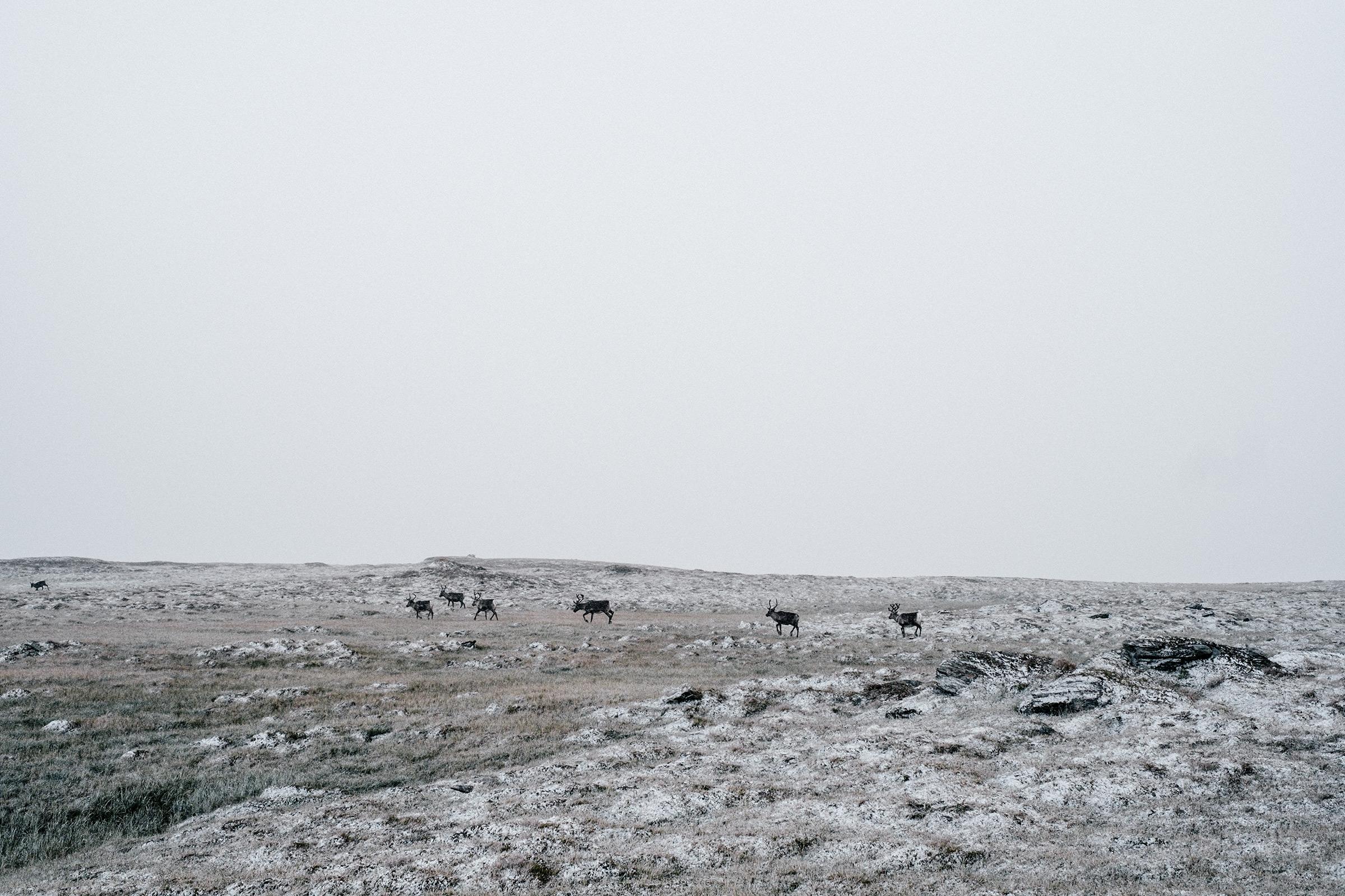 Am Lulep Rissájávrre, Schweden, Foto: Martin Hülle