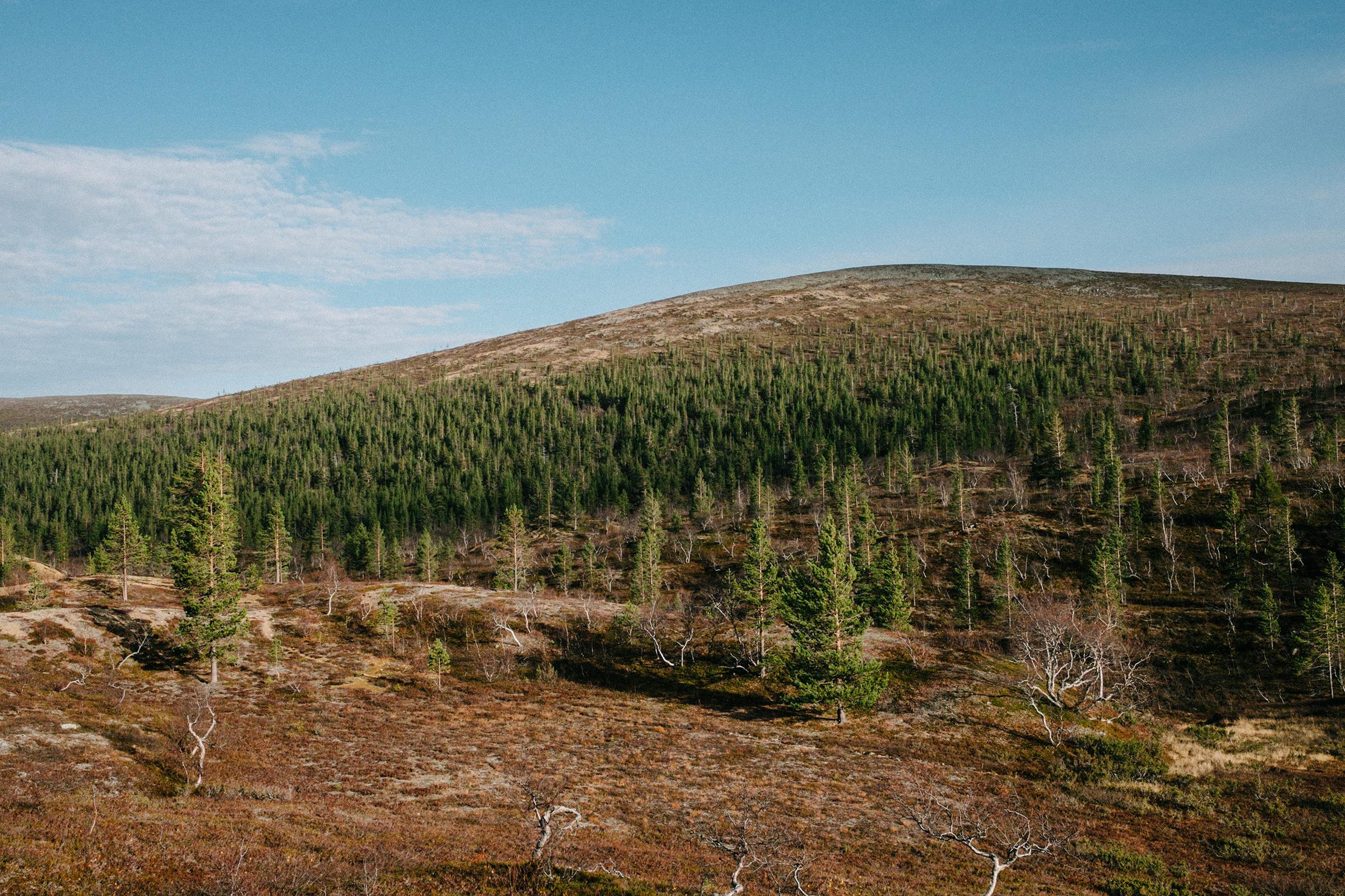 Hattupää, Finnland, Foto: Martin Hülle